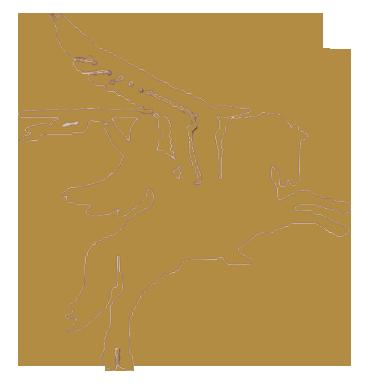 Pegasus Aerials & Satellites